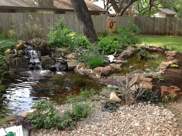 Backyard Pond With Waterfall And Bog