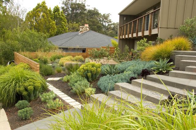 Mid Century Modern Midcentury Garden San Luis Obispo