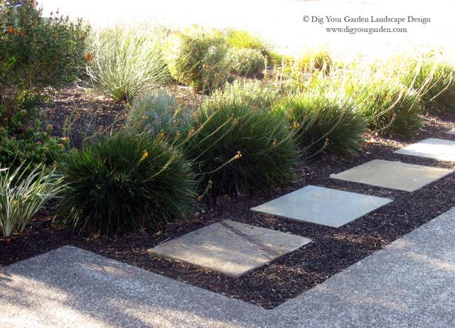 Landscape design with black mulch : Landscape san francisco by dig your garden design