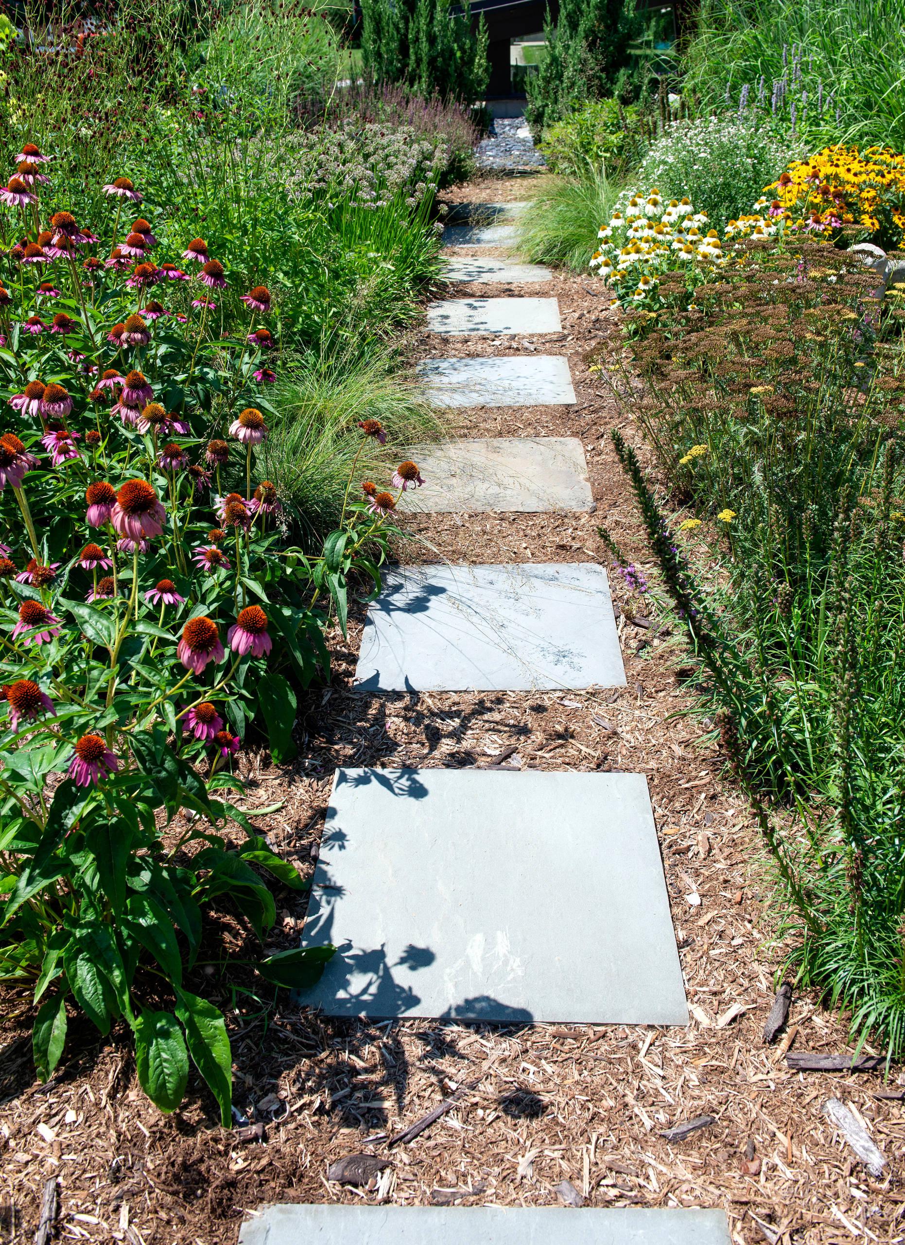 Mid century Perennial Garden and Path - Racine