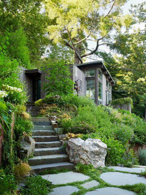 Mill Valley Cabins contemporary-landscape