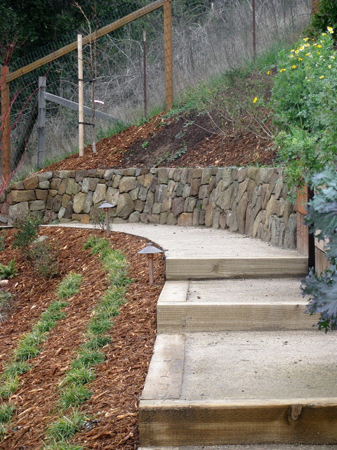 Mill Valley Garden traditional-landscape