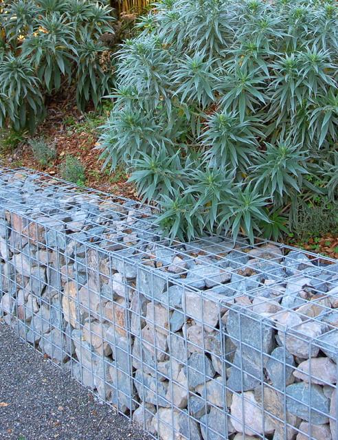 Mill valley modern garden modern garden san for Garden design mill valley