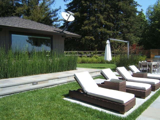 Mill valley modern modern patio san francisco by for Outer space design landscape architects