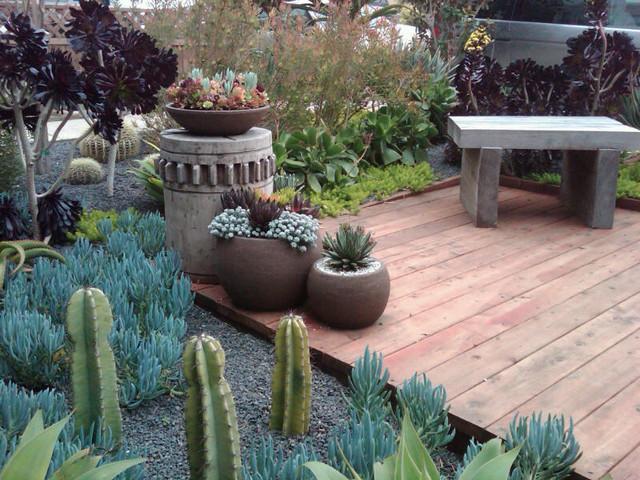 Millbrae Succulent Garden / Flora Grubb eclectic-landscape