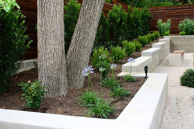 Minimalist backyard modern landscape austin by robert leeper landscapes - Gardening for small spaces minimalist ...