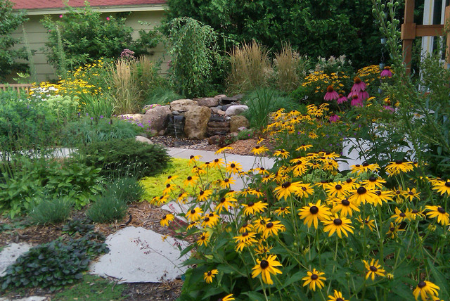 Minneapolis Eco-yard contemporary-landscape