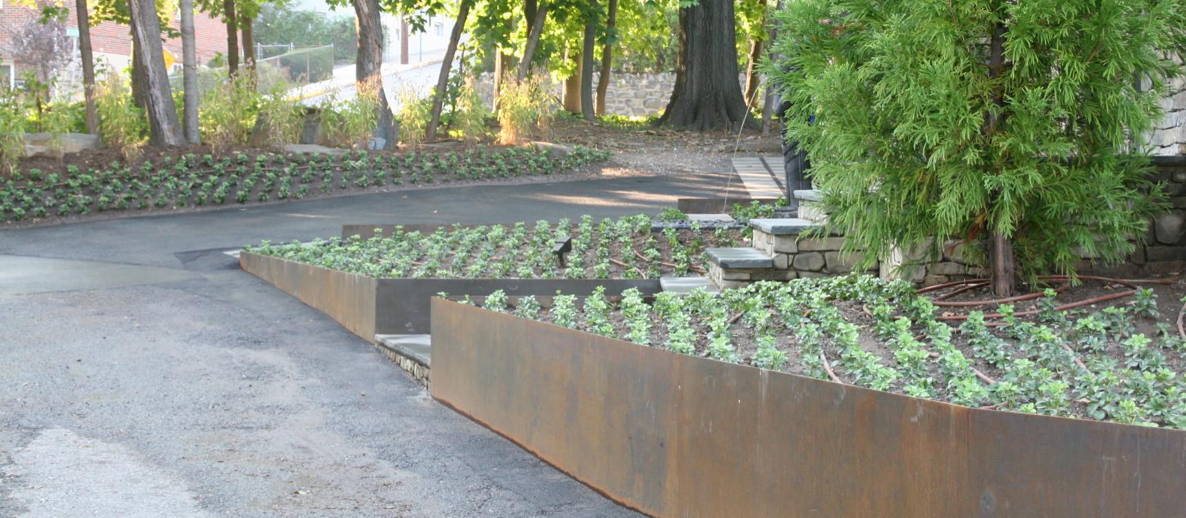 Modern Asian Garden