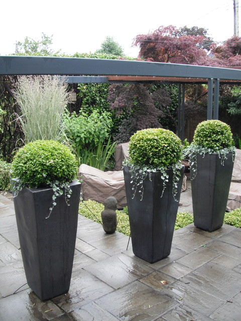Modern Containers - Contemporary - Landscape - Vancouver ...