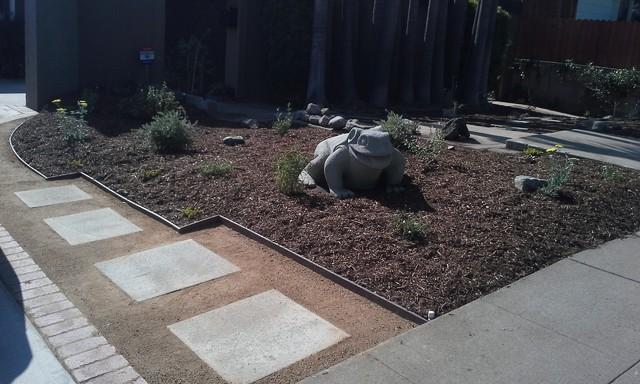 Modern Drought Tolerant Landscape Design Modern