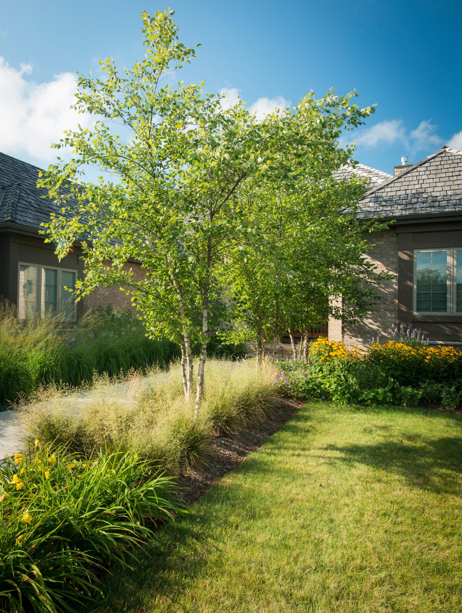 Modern Front Yard Landscape - Mequon