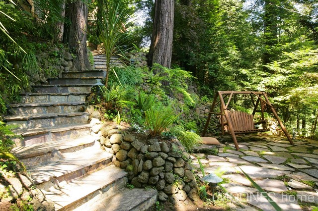 Modern home in mill valley redwood forest eclectic for Garden design mill valley