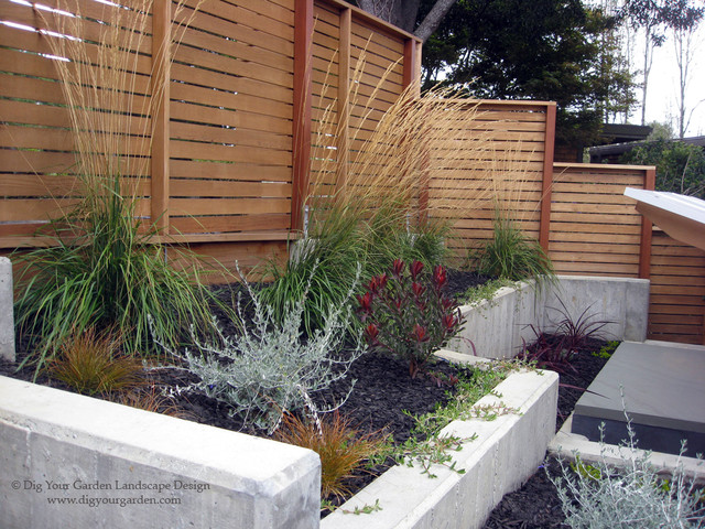 Modern landscape in mill valley modern landscape san for Garden design mill valley