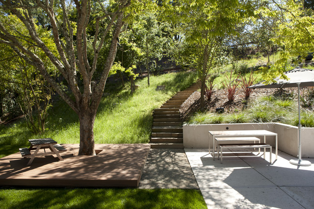 Curb appeal modern landscape san francisco by for San francisco landscape architecture