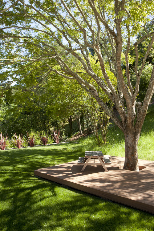 Landscaping Wood Patio Under Trees