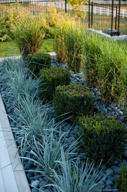 modern planter modern landscape salt lake city by