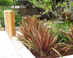 Modern Transformation contemporary landscape