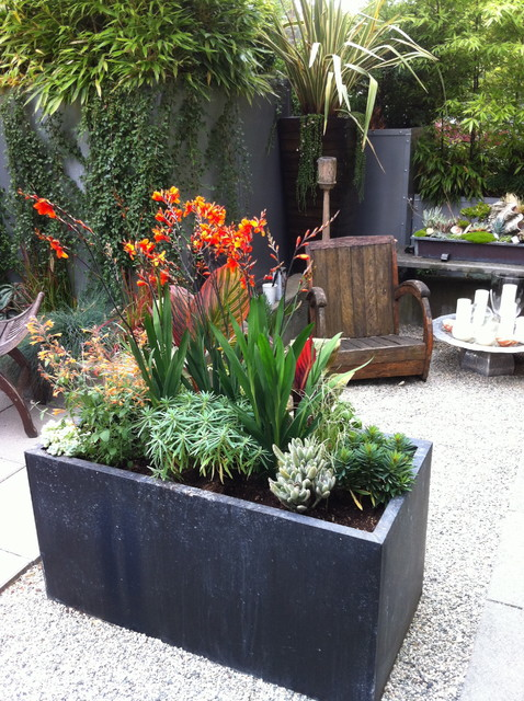 Modern tropical courtyard tropical garden vancouver for Tropical courtyard garden design