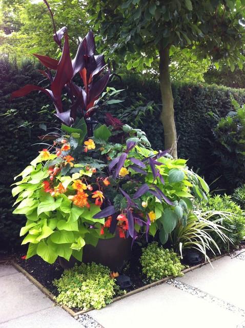 Modern tropical garden 2013 tropical landscape for Garden design vancouver