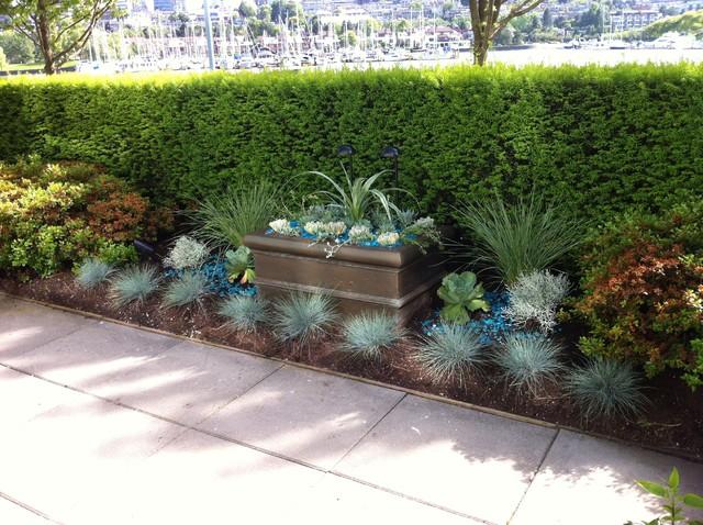 modern tropical garden 2013 - tropical - garden - vancouver