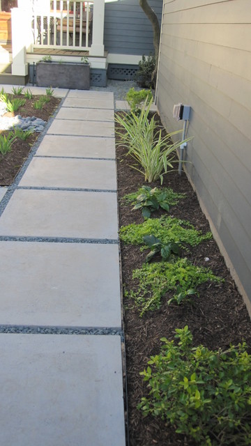 Modern with citrus and ornamental grasses. contemporary-landscape