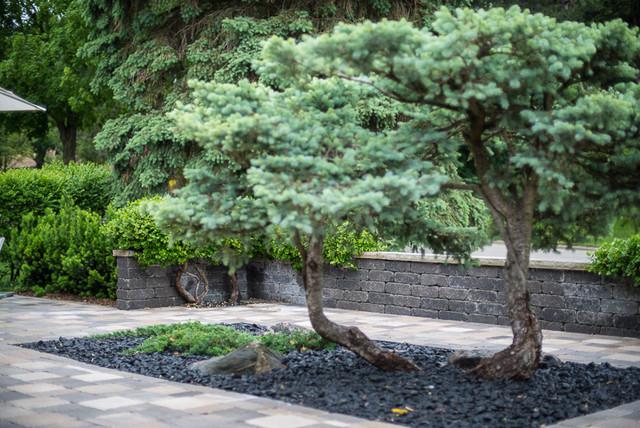 Modern Zen Garden Courtyard Contemporary Landscape