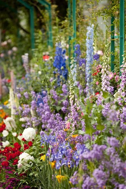 Monet's Garden landscape