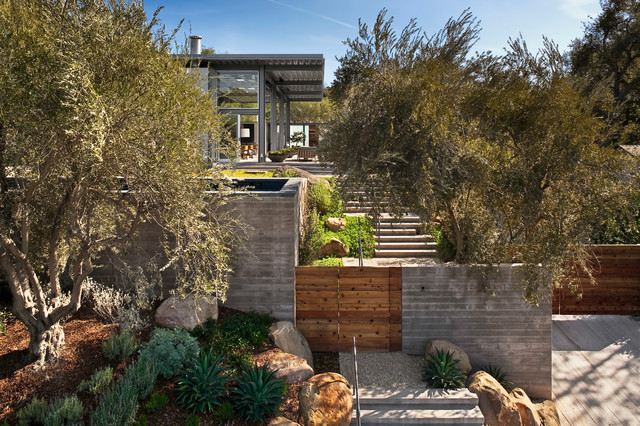 contemporary landscape by Caputo Construction