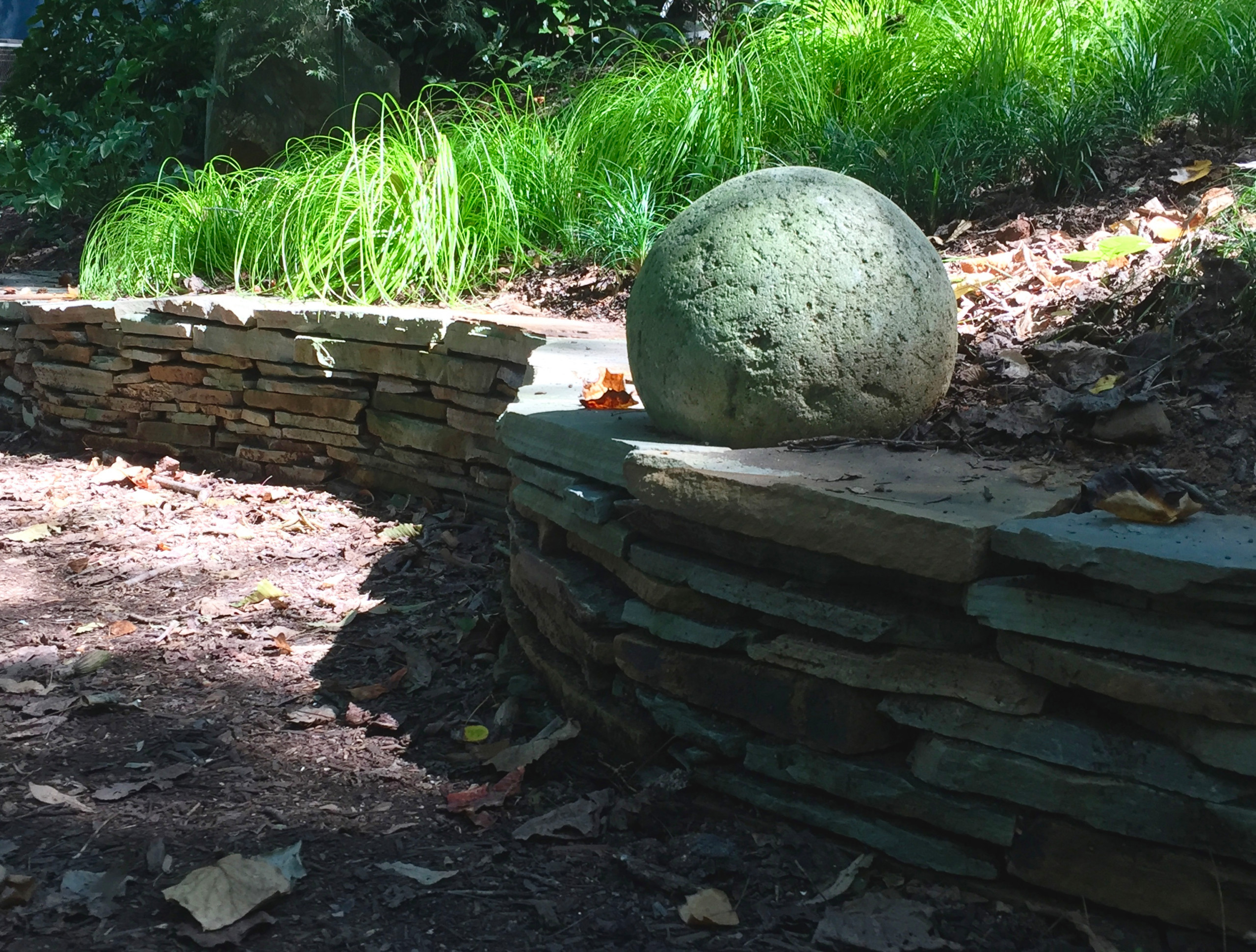 Morning light in the sculpture garden