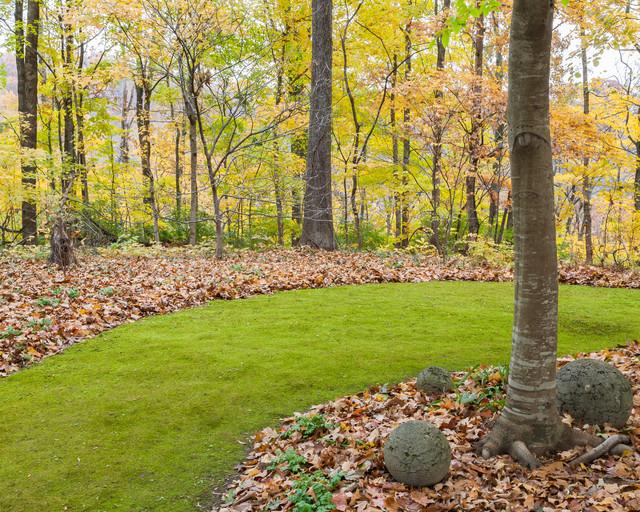 Moss & Moss Lawns traditional-landscape