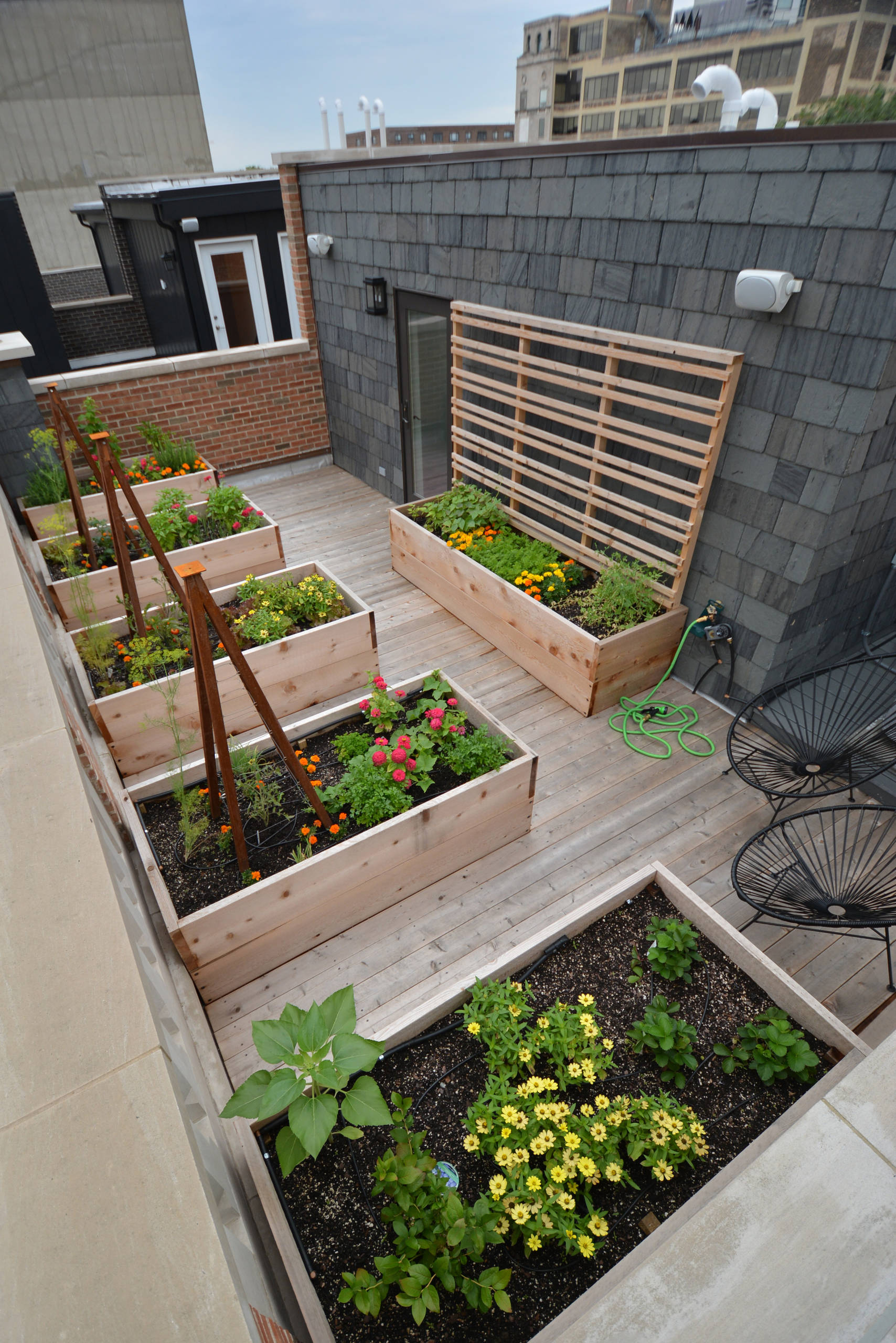18 Beautiful Rooftop Landscaping Pictures Ideas October 2020 Houzz