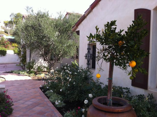My Garden Spanish Revival Mediterranean Landscape