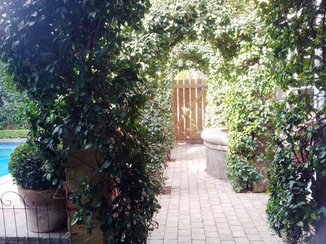 my own garden traditional-landscape