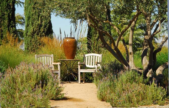 Inspiration For A Mediterranean Full Sun Backyard Landscaping In Sacramento.