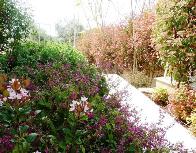 Narrow Passageway Between Jasmine Mansion And The