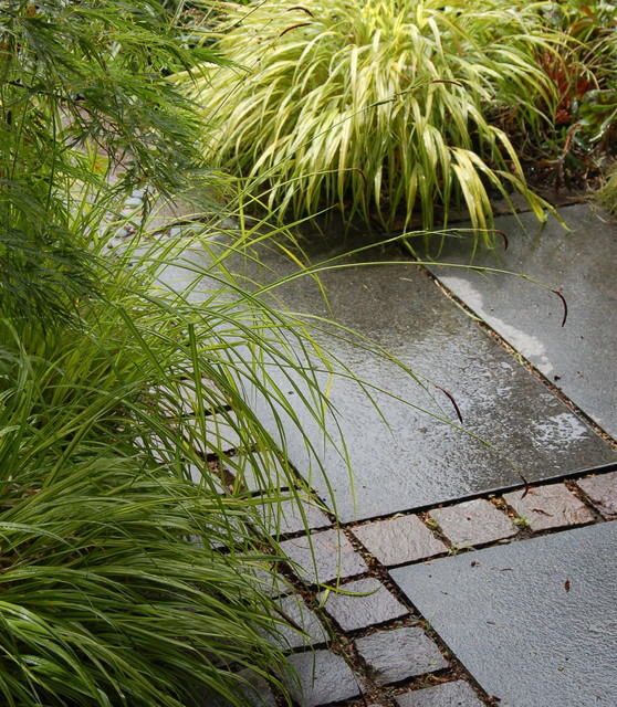 Root Landscaping : Landscape architects designers
