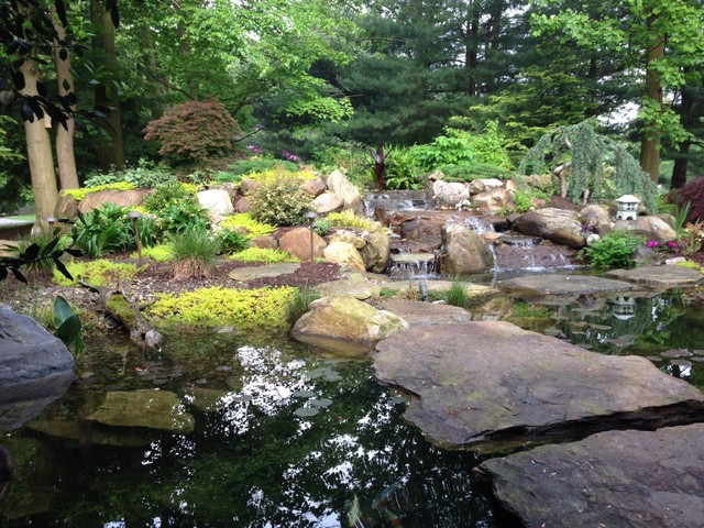 Natural koi pond with bridges that you walk across going for Natural koi pond