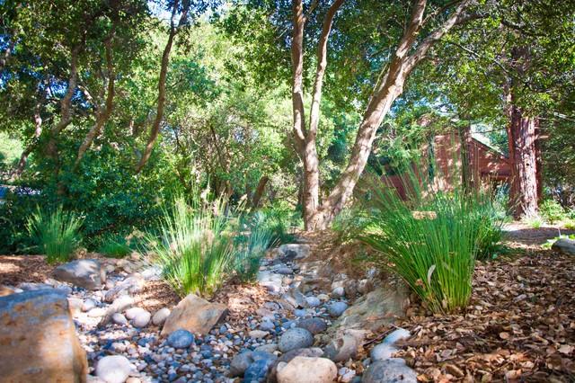 Modern window treatments ideas - Natural Landscapes Mediterranean Landscape San Luis Obispo By