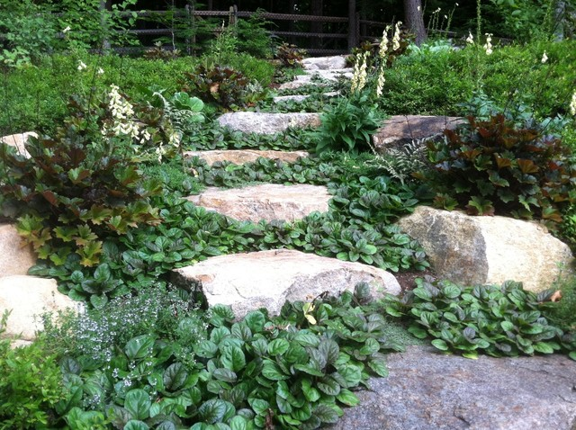 Natural Stone Path With Groundcover Rustic Landscape