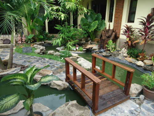 Natural Stream And Bridge Garden Bangkok Tropical Landscape