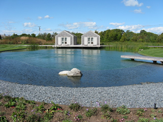 Natural Swimming Pool traditional-landscape