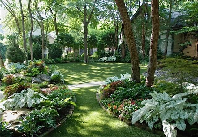 Natural Tropical Landscape Tropical Landscape Dallas By