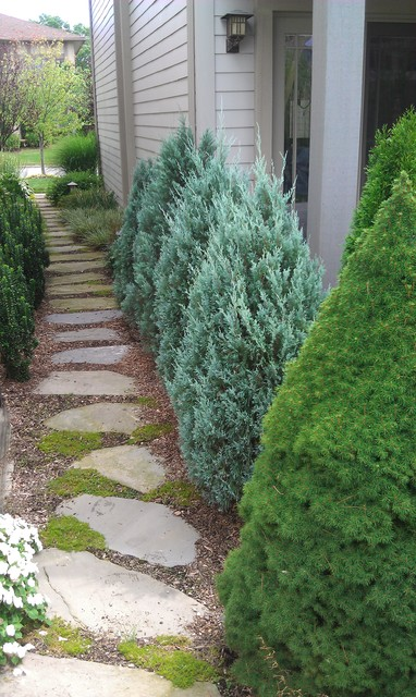 Natural Walkways & Steps traditional-landscape