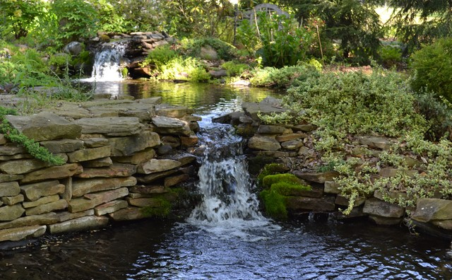 Natural Water Feature & Landscaping traditional-landscape
