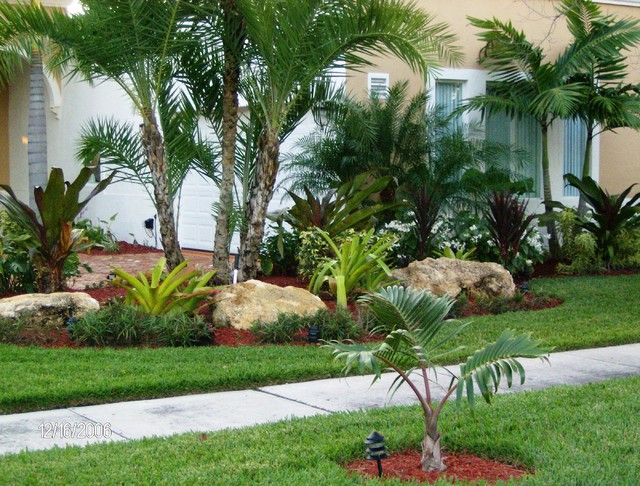 Front yard landscaping tropical ideas home decorating ideas for Tropical landscape
