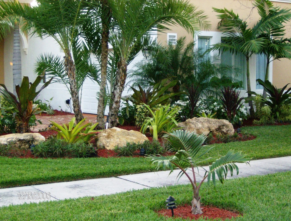 Inspiration for a tropical landscaping in Miami.