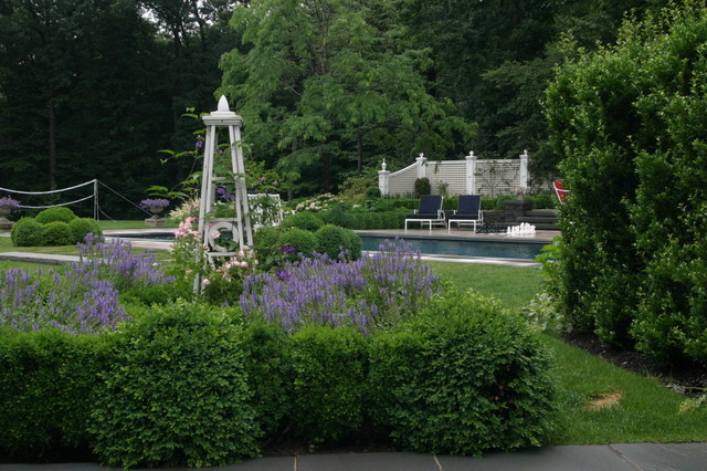 New Canaan Greek Revival - Pool area plantings traditional-landscape