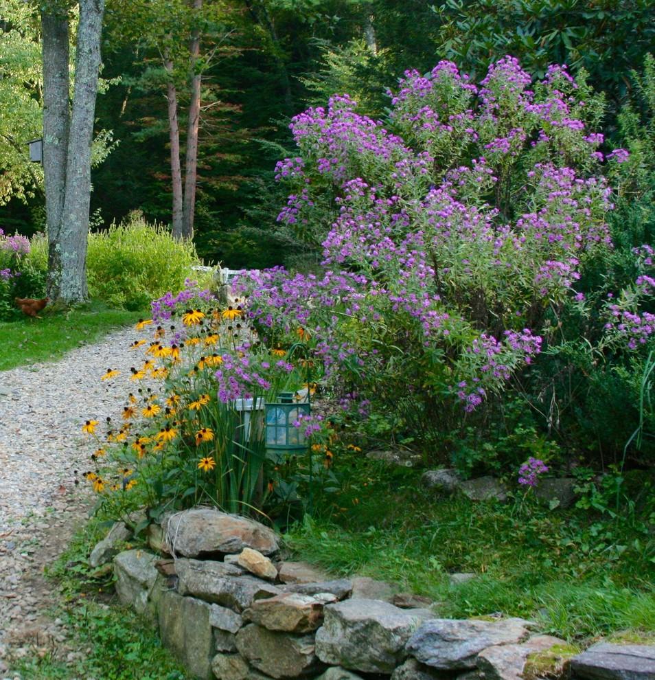 New England And New York Aster Landscape Boston By Ellen Sousa Turkey Hill Brook Farm