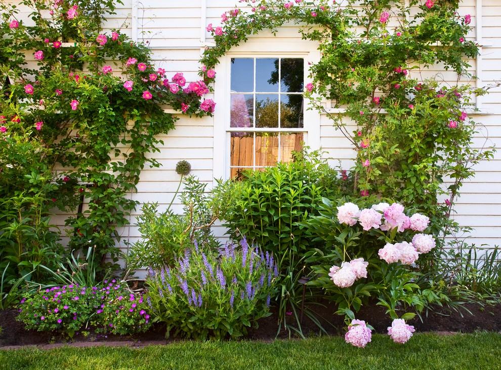 New England Backyard - Landscape - Boston - by Trent Lloyd ...