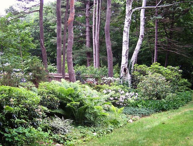 New England Perennial Flower Gardens Eclectic Landscape
